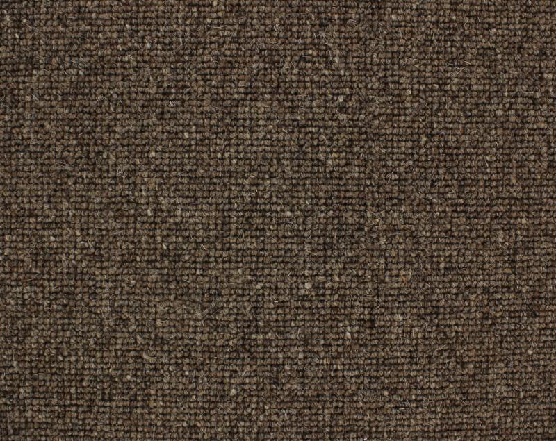 Tauranga 834 Molasses